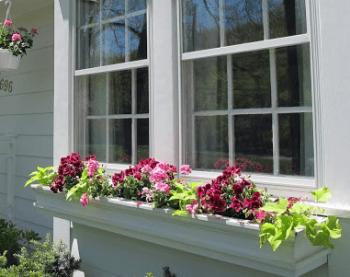 窓の花台(フラワーボックス)の画像